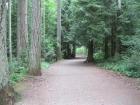 Westwood Lake Trail